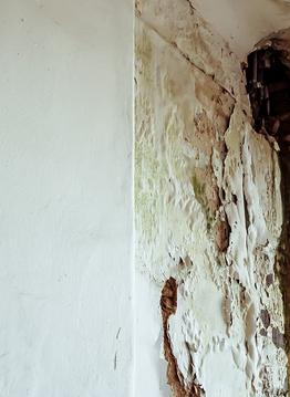 An einer derart feuchten Wand könnte auch Gips nichts Raumklima-regulierendes ausrichten