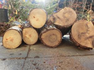 Altes Holz brennt nicht / schlecht