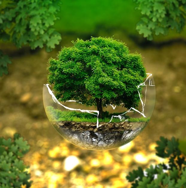 Ein biologisches Naturprodukt wie Holz unter Zusatz von 50% an chemischen Bindemitteln zu verarbeiten ist alles andere als umweltfreundlich...